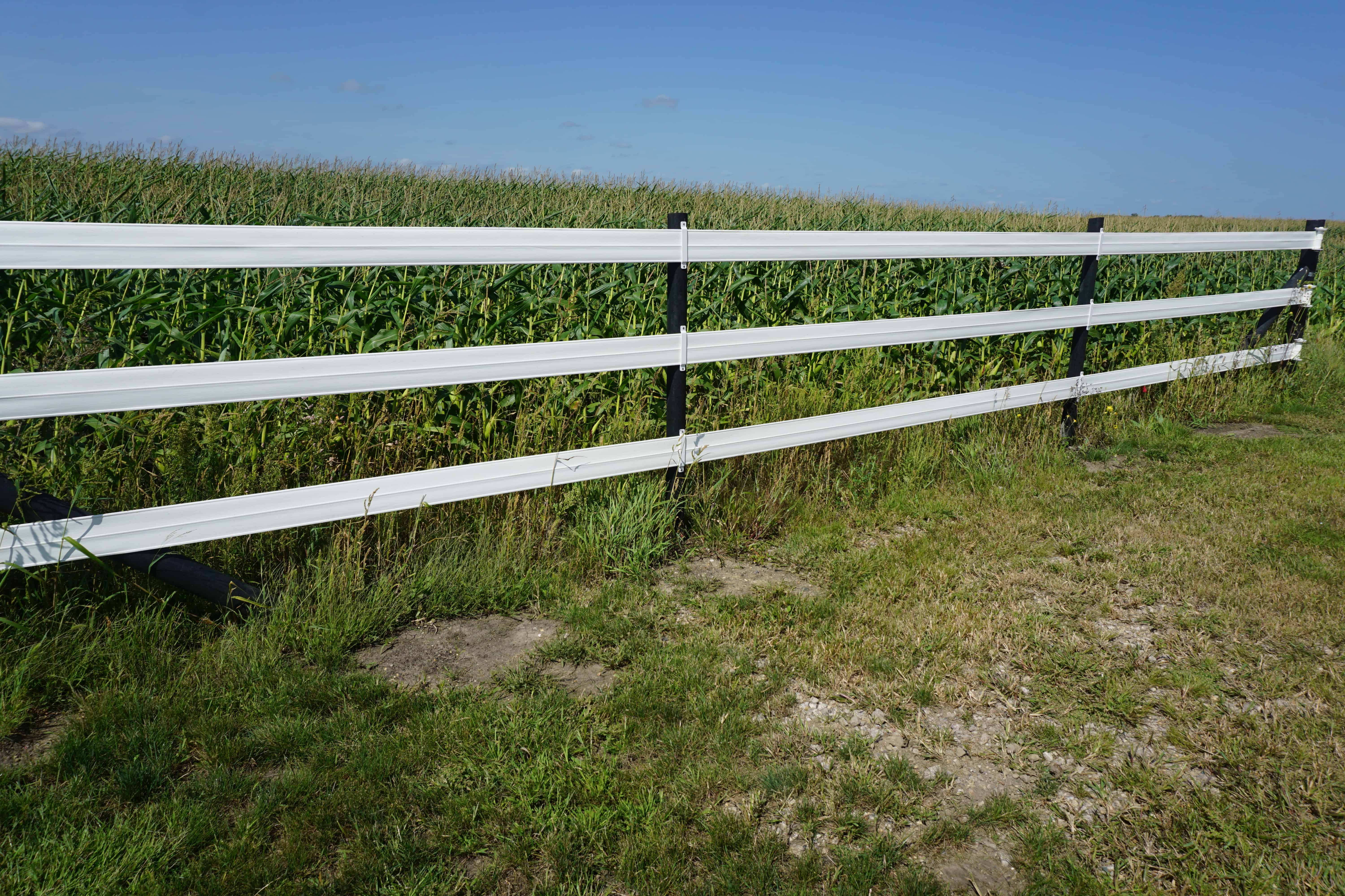 fencing in agricultural setting