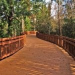 public boardwalk in park made with recycled plastic lumber