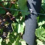 close up of vineyard post made out of recycled plastic