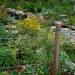 plastic wood fence post securing garden of flowers