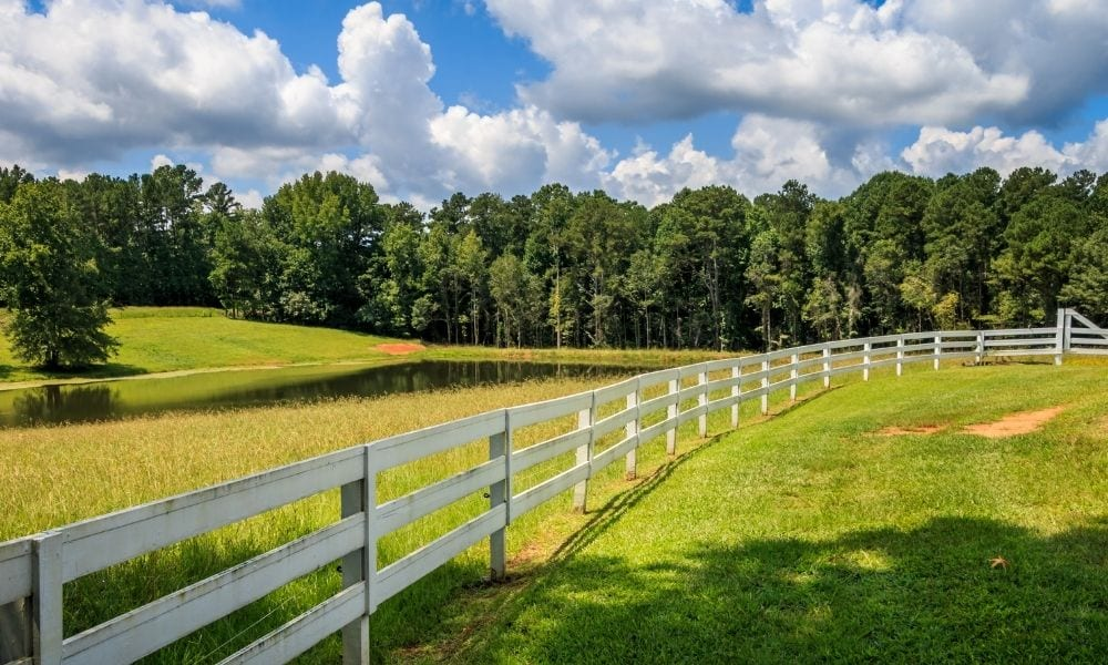What To Consider When Choosing Farm Fencing
